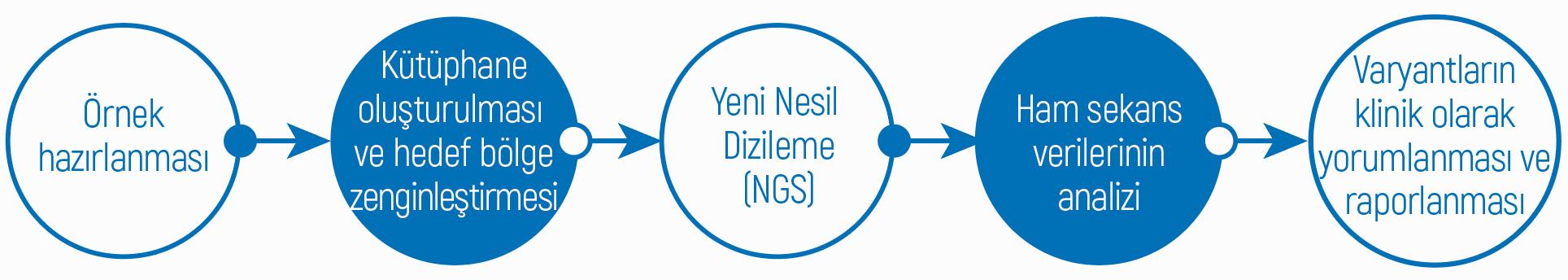 onkogenetiks-tmy-msi-analizinin-genel-is-akisi