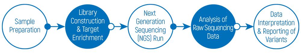 onkogenetiks-tmy-msi-workflow1