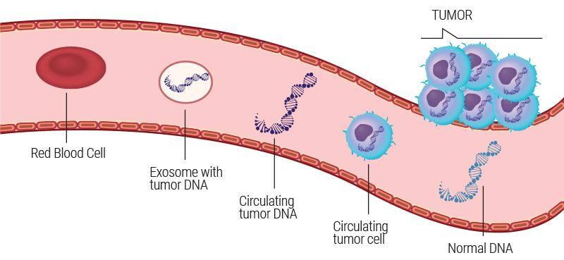 onkogenetiks-tumor-shema